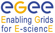 Enabling Grids for e-Science