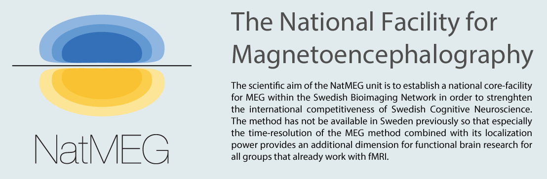 Federated cloud for Swedish National facility of Magnetoencephalography